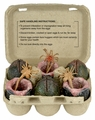 Aliens Xenomorph Eggs in Carton Set by NECA