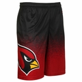 Arizona Cardinals NFL 2016 Gradient Polyester Shorts By Forever Collectibles