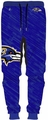 Baltimore Ravens NFL Polyester Mens Jogger Pant by Forever Collectibles