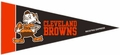 Cleveland Browns NFL Mini Pennant