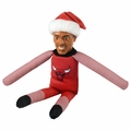 Derrick Rose (Chicago Bulls) Player Elf
