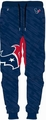 Houston Texans Polyester Mens Jogger Pant by Forever Collectibles