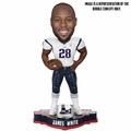 James White (New England Patriots) Super Bowl Champions Bobblehead by Forever Collectibles