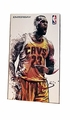 "LeBron James (Cleveland Cavaliers) 1/9th Scale 8"" Action Figure Enterbay"