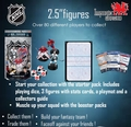 NHL 2.5'' Starter Pack #4 2015 Imports Dragon