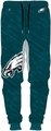 Philadelphia Eagles NFL Polyester Mens Jogger Pant by Forever Collectibles