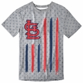 St Louis Cardinals Big Logo Flag Tee by Forever Collectibles