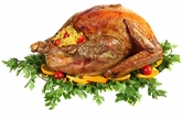 Certified Organic Turkey / 12 to 16 Lbs.