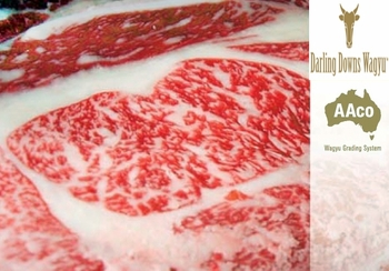 where to buy wagyu beef