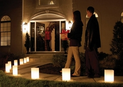 Luminary Lantern Kit - 10 Lanterns