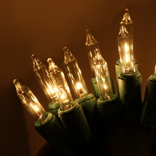 http://ep.yimg.com/ay/yhst-132146841436290/20-bulb-mini-light-set-4ft-clear-w-green-cord-5.jpg