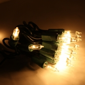 20 Bulb Mini Light Set - 4ft. Clear w/ Green Cord