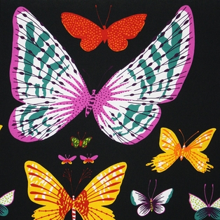 http://ep.yimg.com/ay/yhst-132146841436290/african-butterfly-cotton-fabric-black-20.jpg