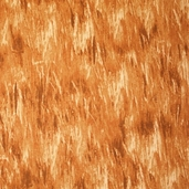 American Elk Cotton Fabric - Brown