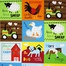 http://ep.yimg.com/ay/yhst-132146841436290/at-the-farm-animal-panel-cotton-fabric-bright-ali-13021-195-bright-21.jpg