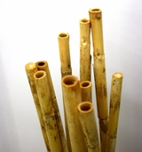 Bamboo Pole Bundle - Natural