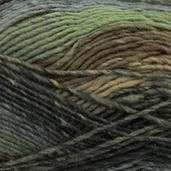 Bernat Mosaic Yarn - Into The Woods