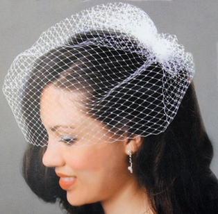 http://ep.yimg.com/ay/yhst-132146841436290/bridal-collection-ready-for-my-closeup-birdcage-veil-2.jpg
