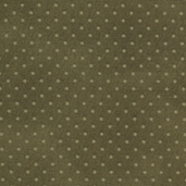 Buggy Barn Basics Cotton Fabric - Polka Dot Green