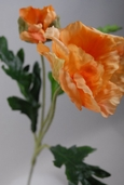 California Poppy Spray - 21in - Peach - Box of 12