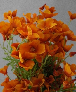 http://ep.yimg.com/ay/yhst-132146841436290/california-poppy-spray-mini-26in-pkg-of-12-orange-2.jpg