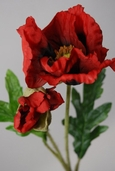 California Poppy Spray with Bud 21in - Box of 12 - Red