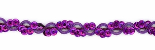 http://ep.yimg.com/ay/yhst-132146841436290/cancun-cup-sequin-braid-trim-purple-27.jpg