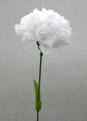 Carnation Spray Large 17 in - Pkg of 24 - White