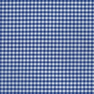 http://ep.yimg.com/ay/yhst-132146841436290/carolina-gingham-1-8in-royal-2.jpg