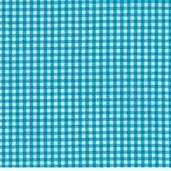 Carolina Gingham 1/8in. - Turquoise
