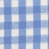 Carolina Gingham 1in. - Blue