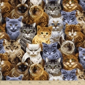 Cats and Dogs Small Packed Cats Cotton Fabric - Natural