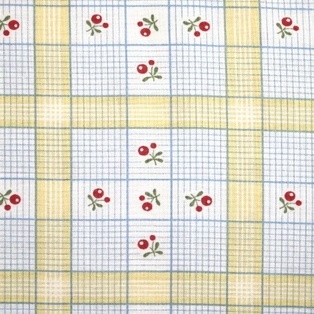 http://ep.yimg.com/ay/yhst-132146841436290/charlevoix-cotton-fabric-sunshine-checks-3.jpg