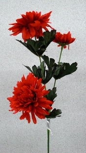 http://ep.yimg.com/ay/yhst-132146841436290/chrysanthemum-spray-23in-pkg-of-12-red-3.jpg
