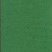 Classic Felt Square - Pack of 24 - Kelly Green