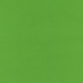 Color Spectrum Cotton Fabric Solids - Green - CSPE-08-G