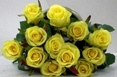 Confetti Small Rose Bud Spray - 25in - Pkg of 12 - Yellow
