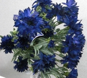 Cornflower Spray 25in Box of 12 - Blue