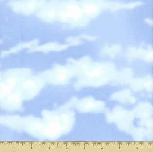 http://ep.yimg.com/ay/yhst-132146841436290/countryscapes-cotton-fabric-sky-light-blue-2.jpg