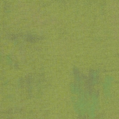 Curio Cotton Fabric - Green