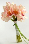 Cymbidium Orchid Wedding Bouquet  10 in - Pink