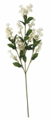 Double Baby's Breath Spray 19in Box of 24 - Cream/White