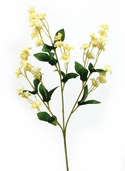 Double Baby's Breath Spray 19in Box of 24 - Yellow