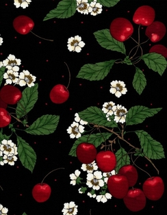 http://ep.yimg.com/ay/yhst-132146841436290/farm-fresh-fruits-and-veggies-cherries-blk-2.jpg