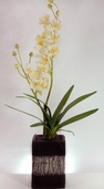 Faux Cream Dendrobium Orchid in a Ceramic Pot