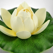 Floating Water Lily Lotus Lights (battery operated) - Ivory