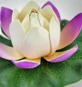 Floating Water Lily Lotus Lights (battery operated) -Violet
