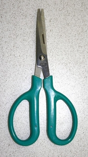 http://ep.yimg.com/ay/yhst-132146841436290/floral-scissors-7in-2.jpg