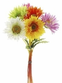Gerbera Daisy Bundle - 6 stems per Bundle - 12in