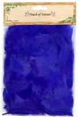 Goose Satinettes Feathers in Royal Blue - Pkg of 3